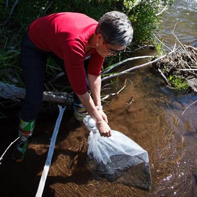 Releasing steelhead salmon along Whychus Creek. Photo: Dashiel Pare-Mayer