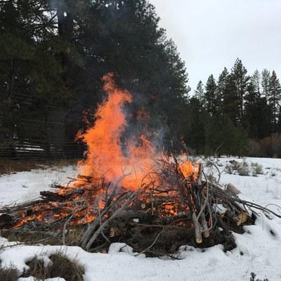 A prescribed burn at Camp Polk Meadow Preserve. Photo: Land Trust