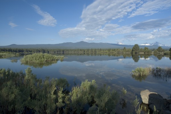 Skyline Forest as seen from Tumalo Reservoir. Photo: Jim Yuskavitch.