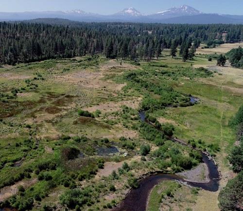 Camp Polk Meadow Preserve. Photo: Universal Drone.