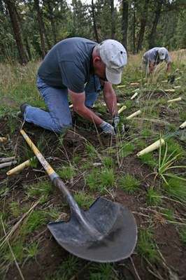 Volunteers help plant at Camp Polk Meadow Preserve. Photo: Jay Mather.