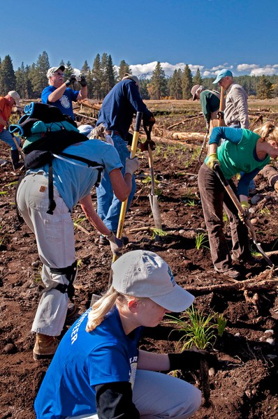 Volunteers help plant vegetation along the restored Whychus Creek channel at Camp Polk Meadow Preserve. Photo: MA Willson.