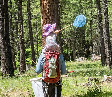 Looking for butterflies at the Metolius Preserve. Photo: Sue Anderson.
