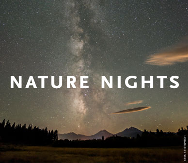 2020_nature-nights_just-name388x336px_sized.jpg