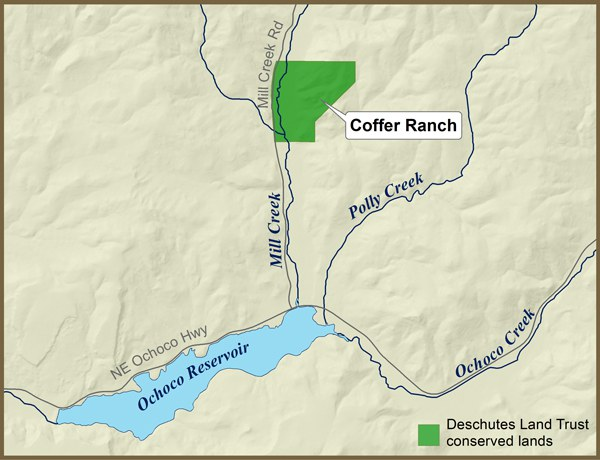 Coffer Ranch 600px