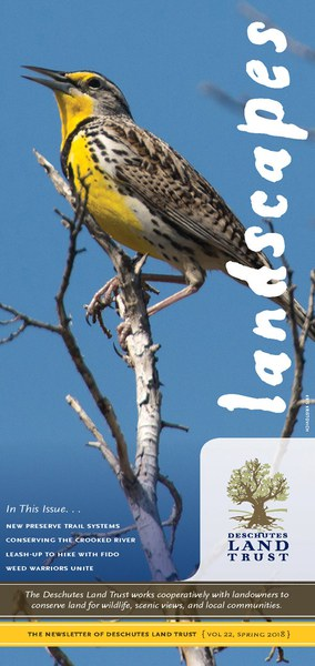 The Land Trust's newsletter is now available. Cover photo: Kris Kristovich.