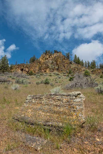 OWEB funding helped the Land Trust with Coffer Ranch. Photo: Douglas Vincent.