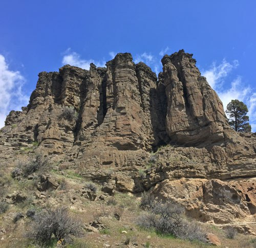 Learn about Central Oregon's explosive history on a geology walk. Photo: Randy Wald.
