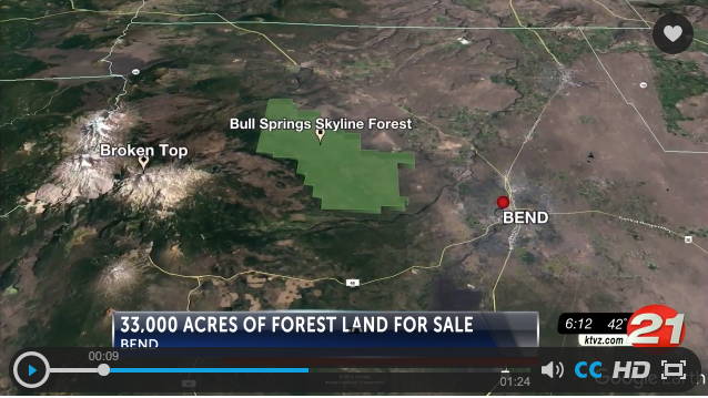 Executive Director, Brad Chalfant, discusses Skyline Forest with News Channel 21.
