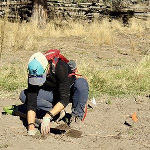 A volunteer plants native vegetation in a newly solarized area. Photo: Land Trust.