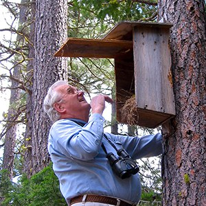 Jim Anderson checks a nestbox at the Metolius Preserve. Photo: Alan St. John.