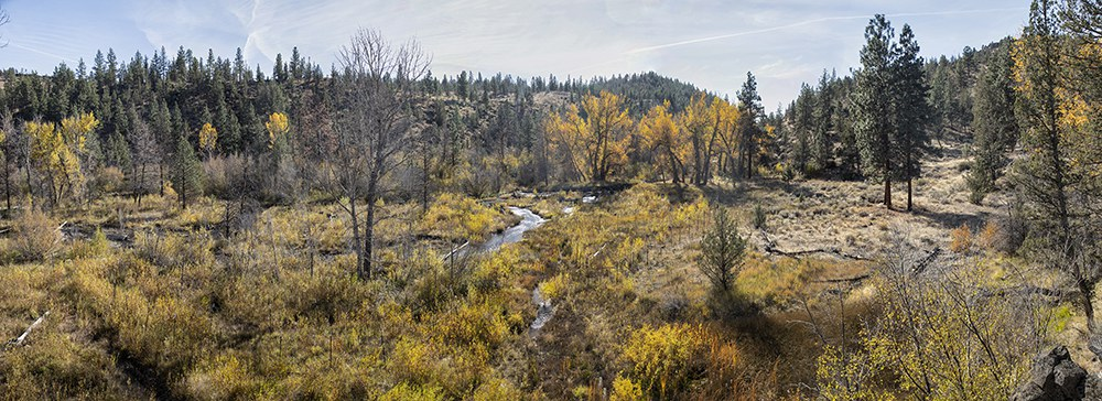 The Whychus Canyon Preserve restoration area in October 2020. Photo: Jay Mather.