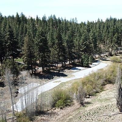 Soil solarization plastic in part of Camp Polk Meadow Preserve. Photo: Land Trust.