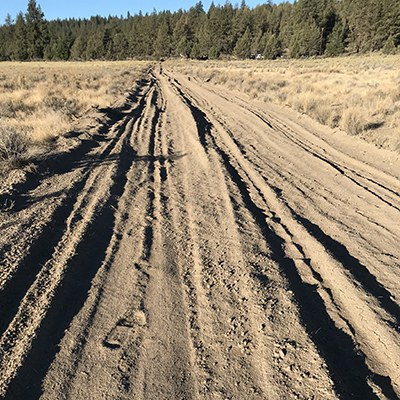 BEFORE: Fire breaks created impacted soil, ruts, and berms. Photo: Land Trust.