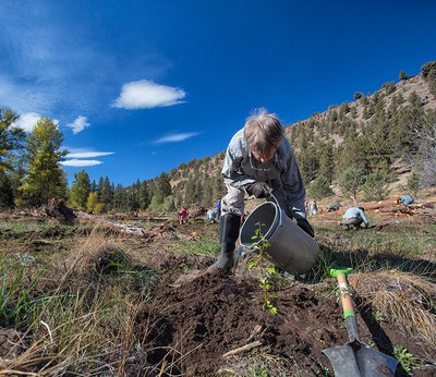 Planting along Whychus Creek. Photo: Jay Mather.