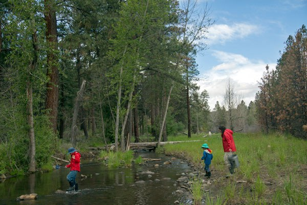 Helping release steelhead fry at Camp Polk Meadow Preserve. Photo: Jay Mather.