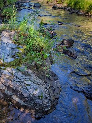 Whychus Creek. Photo: Jay Mather.