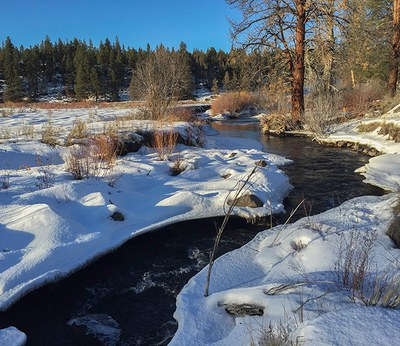 Winter at Camp Polk Meadow Preserve. Photo: Kris Kristovich.