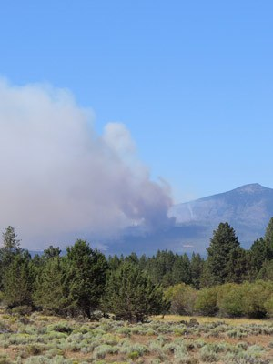 The Milli Fire from Indian Ford Meadow Preserve. Photo: Land Trust.