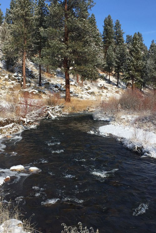 Whychus Creek will be impacted by the new Upper Deschutes Habitat Conservation Plan. Photo: Land Trust.