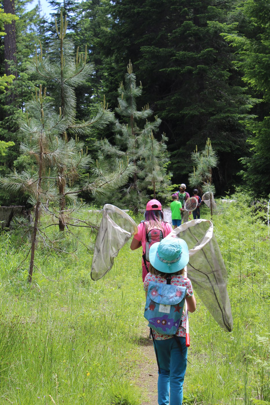 Nets swing on a butterfly walk through the Metolius Preserve. Photo: Land Trust.
