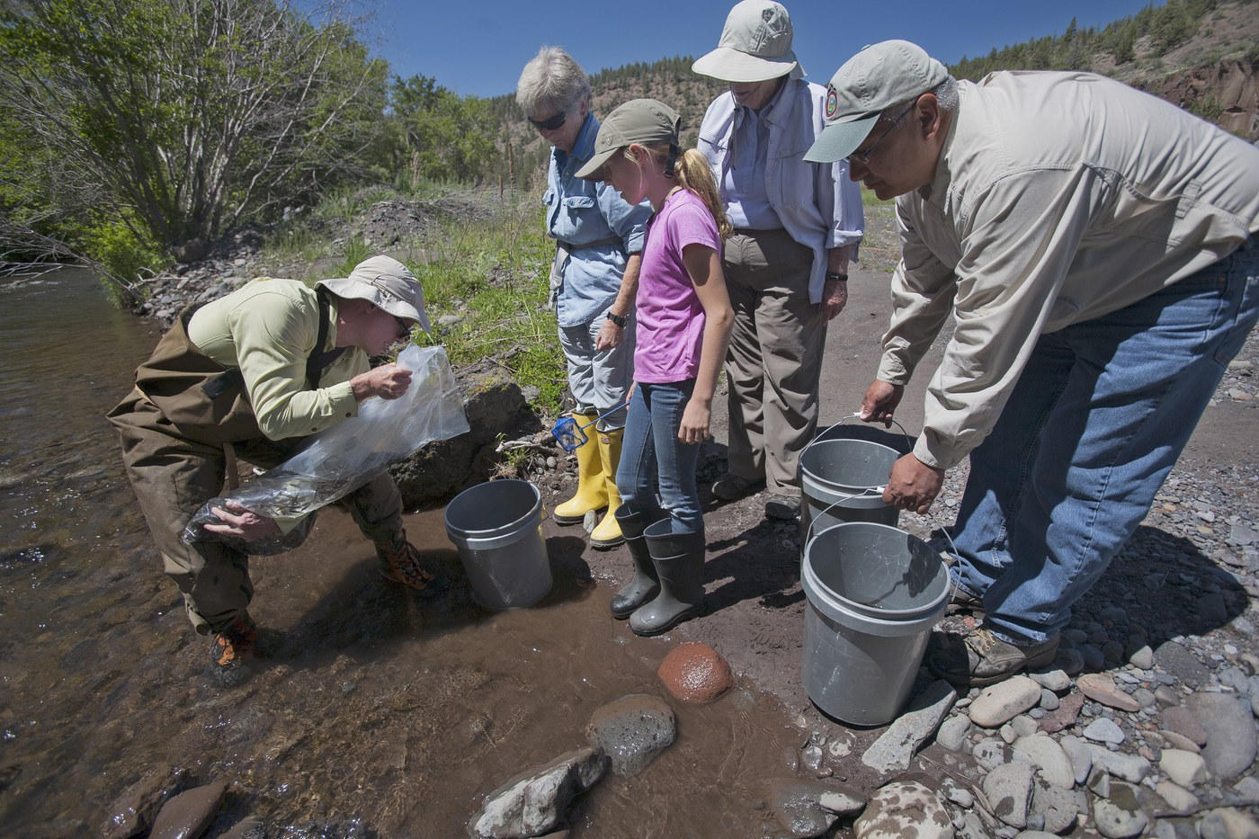 Olive Nye releases fish at Whychus Canyon. Photo: Jay Mather