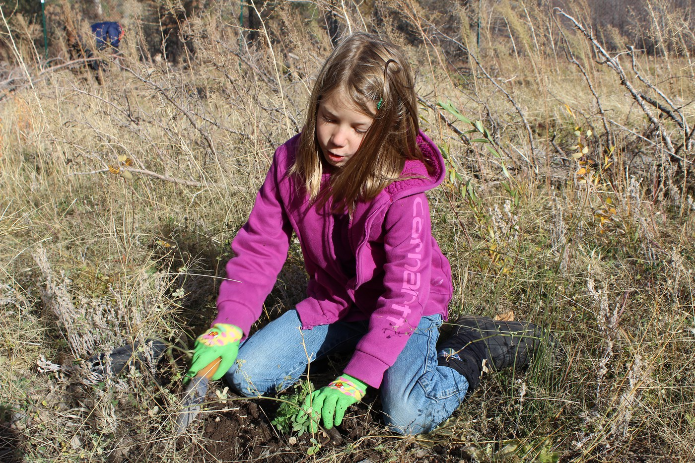 Zoe planting during a volunteer planting party at Whychus Canyon. Photo: Land Trust