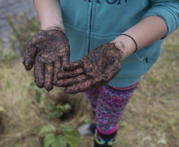 Land Trust volunteer gets hands dirty in nutrient rich soil for new trees. Photo: Jay Mather