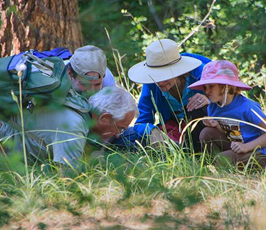 Group of explorers get up close to discover new things about nature. Photo: Sue Anderson.