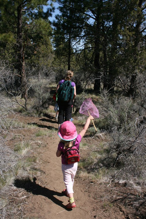 Enjoy these shorter hikes with the little ones in your life. Photo: Land Trust.
