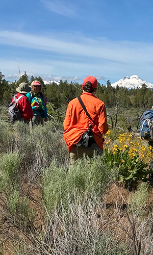 Hikers wear bright colors like orange to help distinguish themselves from deer. Photo: Joan Amero.
