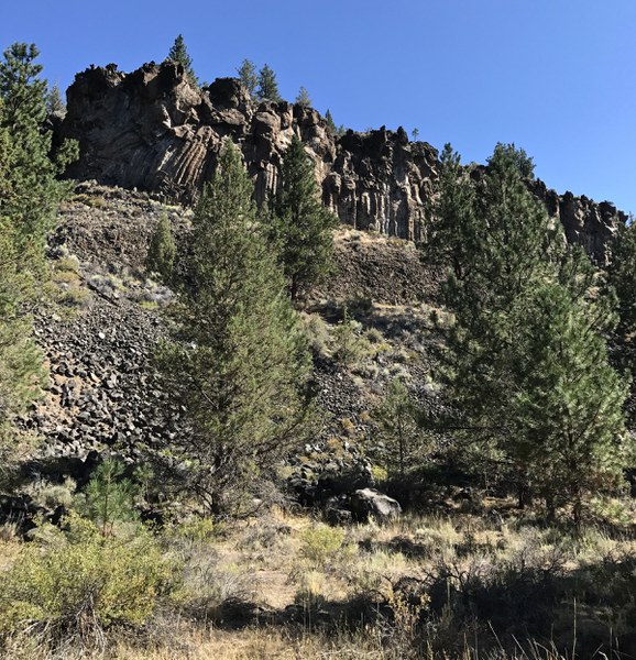 Basalt Columns formed at Aspen Hollow. Photo: Joan Amero