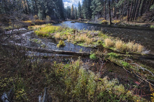 Metolius River in the Fall. Photo: Jay Mather