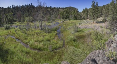 The newly restored Whychus Creek at Whychus Canyon Preserve. Photo: Jay Mather.