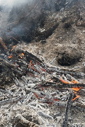 Make sure your campfire is dead out! Photo: Land Trust.