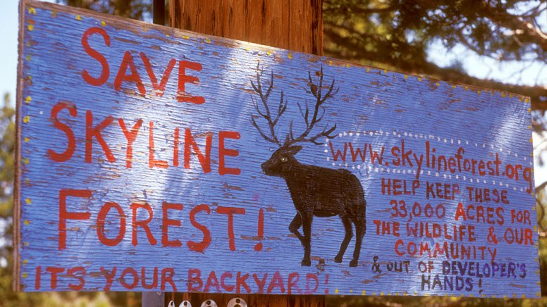 A hand-painted sign helps raise awareness about Skyline Forest. Photo: Bryon Dudley.