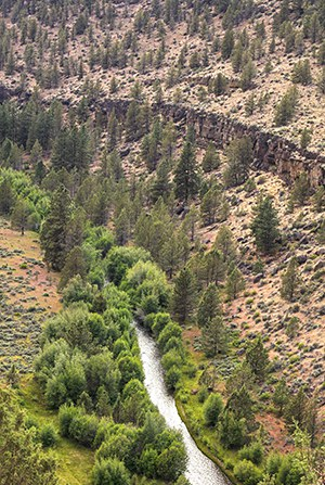 Whychus Creek passes through Whychus Canyon Preserve. Photo: Bruce Jackson.