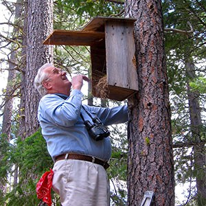 Jim Anderson checks a nest box at the Metolius Preserve. Photo: Alan St. John.