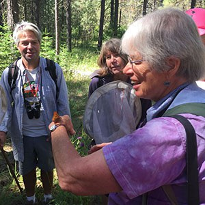 Sue Anderson leading a butterfly walk at the Metolius Preserve. Photo: Land Trust.
