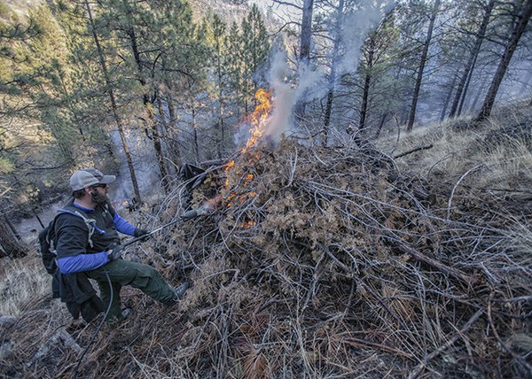 Lighting one of the burn piles. Photo: Jay Mather.