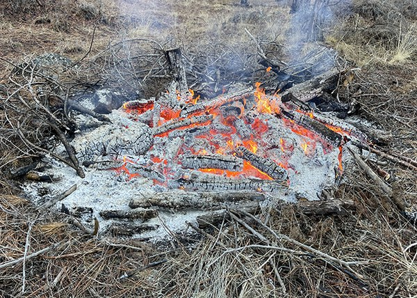 The center of the pile has burned faster, leaving large chunks on the outer ring of the fire. Photo: Land Trust.