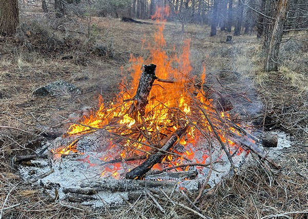 "This burn pile has been ""chunked,"" with material from the outer ring added into the center. Photo: Land Trust."
