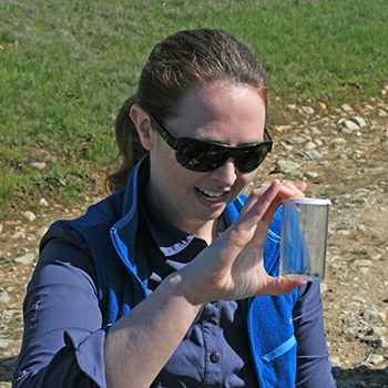 Tara identifies whether an Ohlone tiger beetle is a male or female. Photo: Lynn Overtree.
