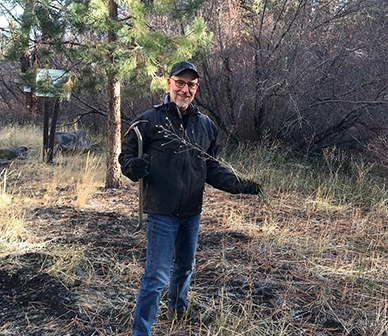 A volunteer helps by pulling weeds at Aspen Hollow Preserve. Photo: Land Trust.