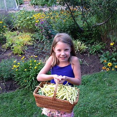 If you like green beans, grow some in your climate victory garden! Photo: Land Trust.