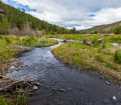 TR.WC_2020_05_early summer scenic_Deschutes_Land_Trust_lores-053_tv_Lead.jpg