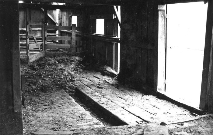 Wood flooring with a gutter in the middle suggests that cattle or dairy animals were fed and milked in this section of the barn. Photo: Ed Barnum.
