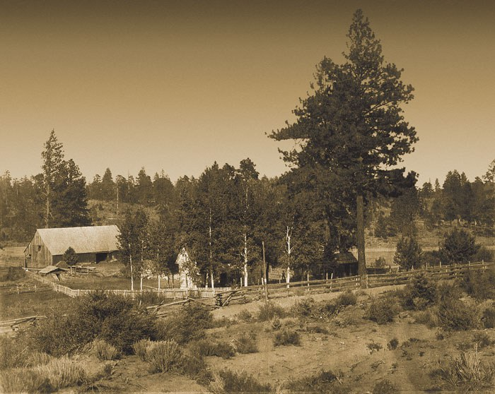 The Hindman house and barn. The dirt road in front of the fence marks the route of the historic Santiam Wagon Road. Photo: courtesy of Jan Hodgers.