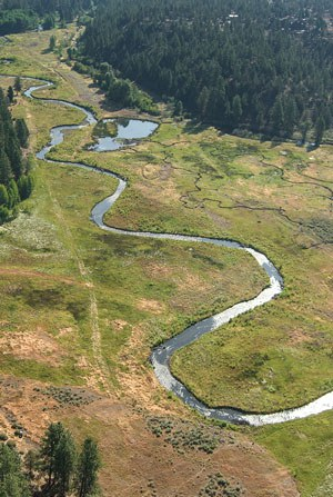 Whychus Creek meanders through the meadow. Photo: Russ McMillan.
