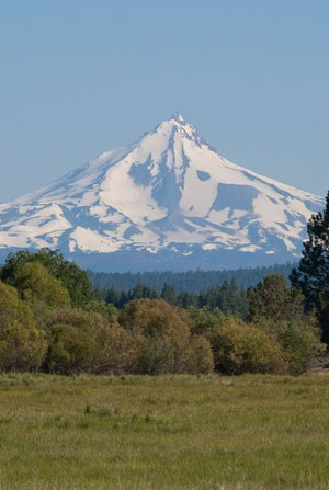Mt. Jefferson from Indian Ford Meadow Preserve. Photo: Gary Miller.